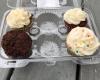The Cupcake Collection NOLA7