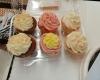 The Cupcake Collection NOLA8